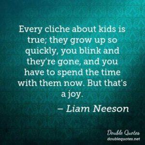 Liam Neeson cliche quote